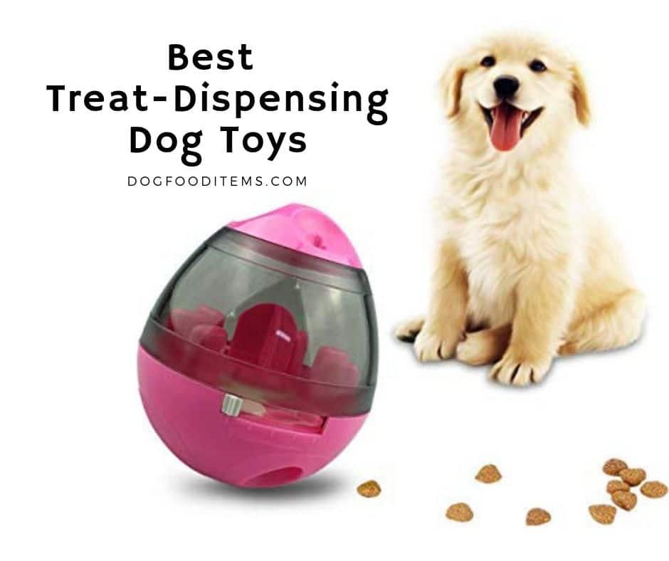Best Treat-Dispensing Dog Toys