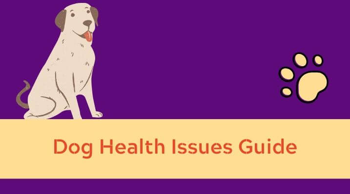 Dog Health Issues