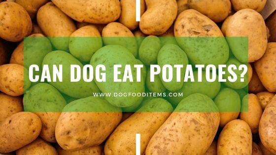 Can dog eat potatoes