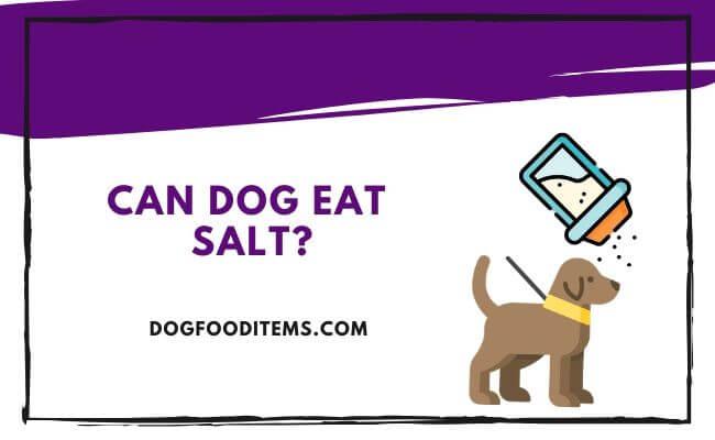 Cann dog eat salt